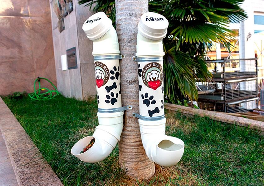 Paramirim: Avenida Botuporã ganha bebedouro e comedouro para cães