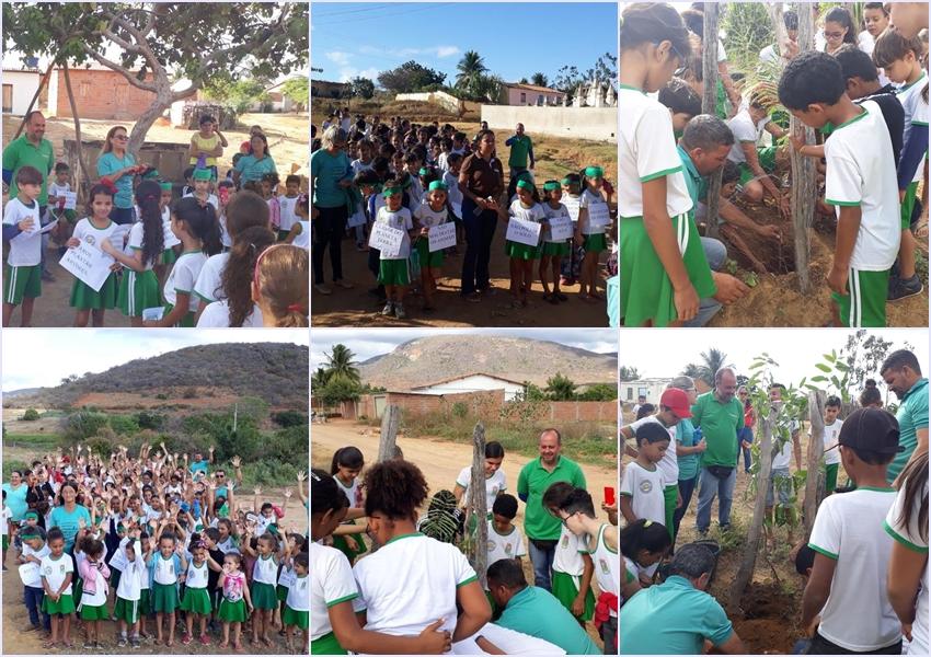 Dia Mundial do Meio Ambiente é comemorado em Livramento