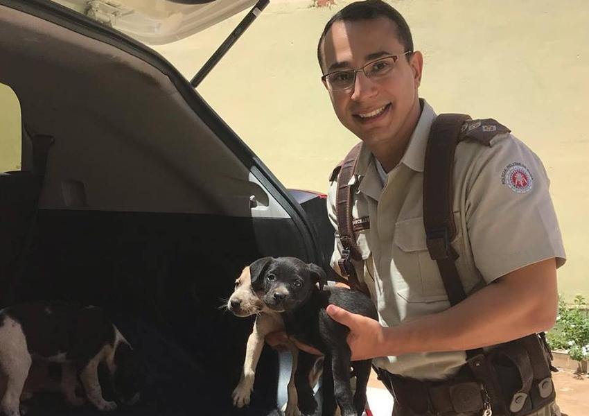 Solidariedade: Animais são resgatados embaixo da ponte do Rio Taquari em Livramento
