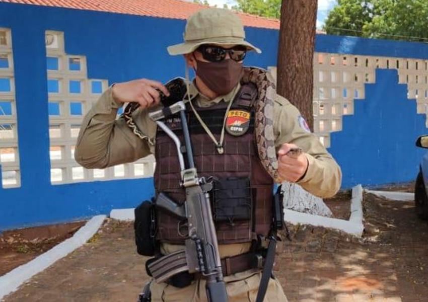 Livramento: Militares da Ronda Rural recolhem jibóia e a devolvem a natureza