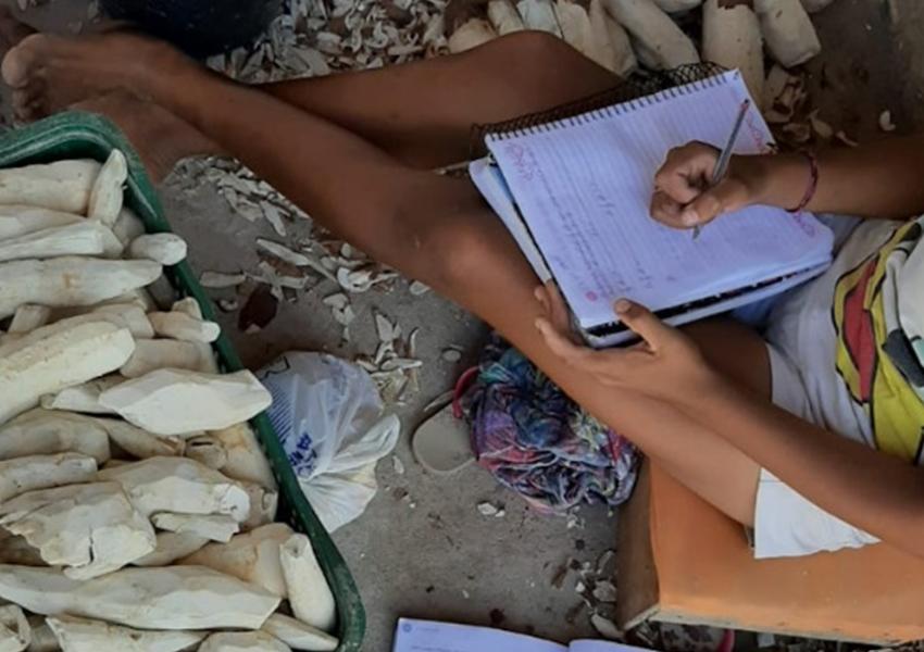 Crisópolis: Crianças são flagradas trabalhando em casas de farinha