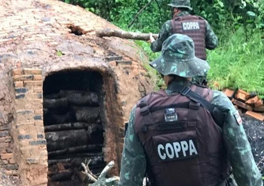 Pojuca: Polícia desarticula serraria e carvoaria ilegais