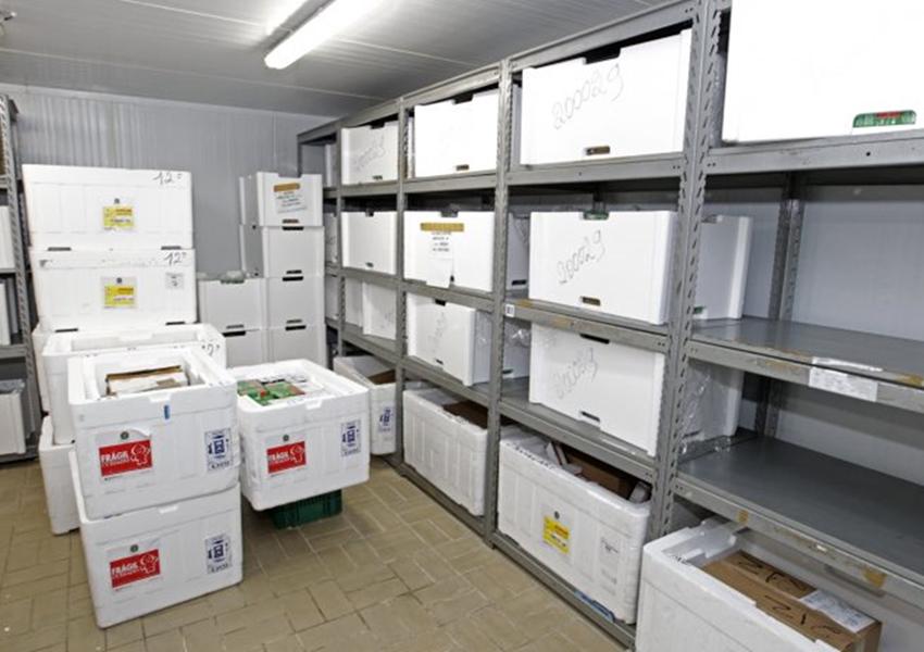 Com esquema especial de segurança, cerca de 180 mil baianos serão imunizados contra o coronavírus nesta primeira fase