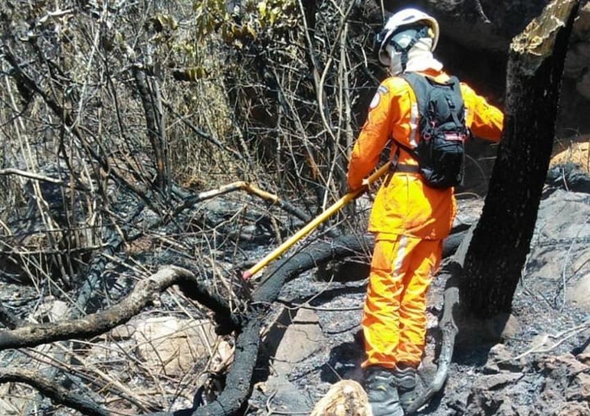 Incêndio atinge vegetação em Érico Cardoso