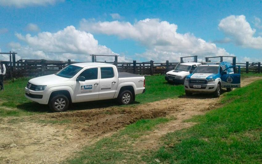 Polícia apreende 2,5 toneladas de carne e suspeita que gado foi alvo de roubo na Bahia