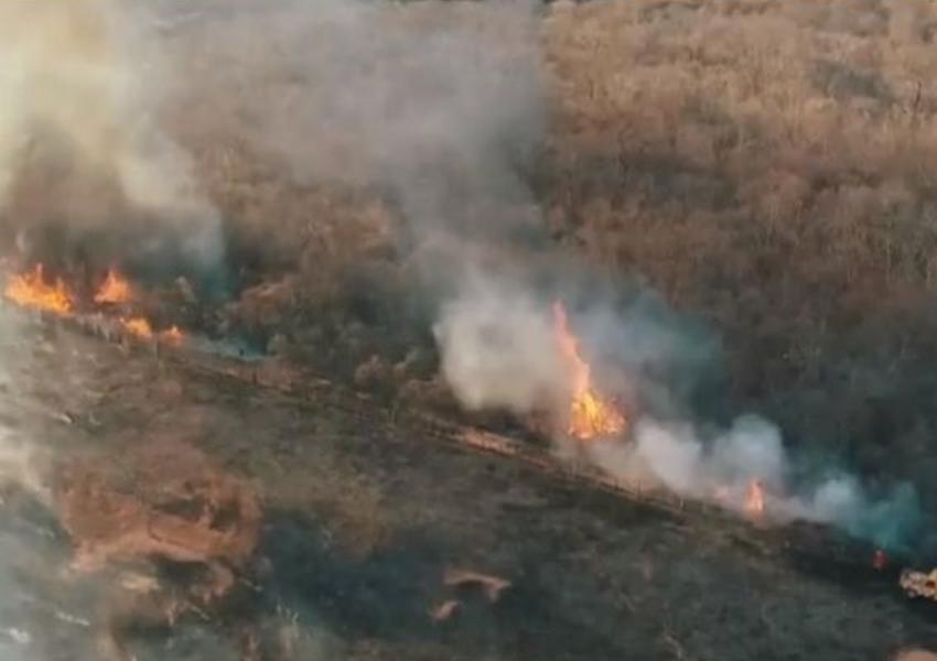 Guanambi: 90 hectares de vegetação são destruídos em incêndio