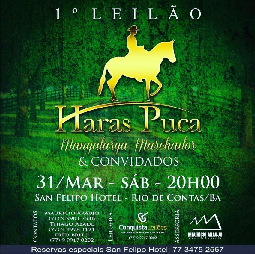 Rio de Contas receberá o 1º Leilão Haras Puca e Convidados