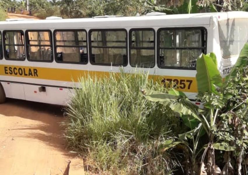 Ilhéus: Motorista de ônibus escolar bate em árvore após veículo perder freios