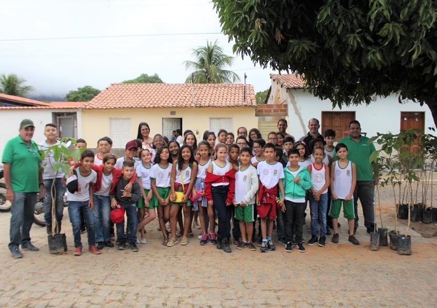 Livramento: SEMAR inicia projeto de rearborização da Rua Durval Guimarães