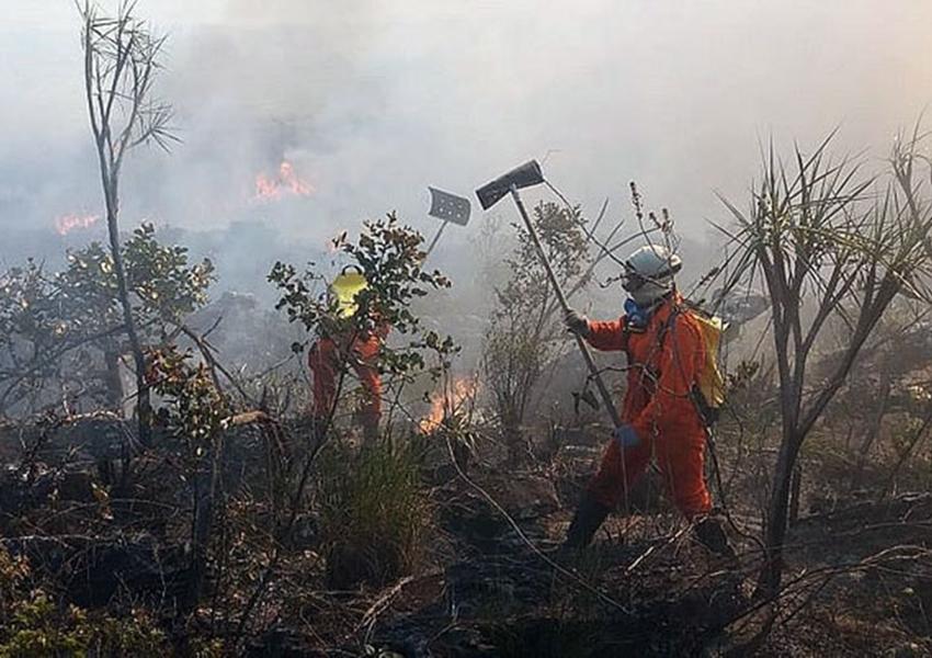 Chapada Diamantina: Incêndio na Serra do Tromba é controlado após 5 dias