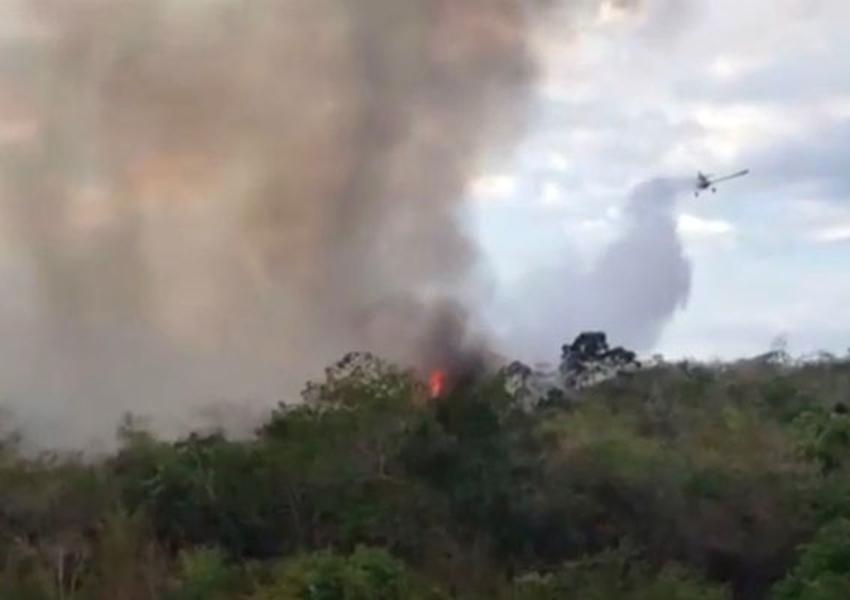 Incêndio atinge vegetação em Ibicoara, na Chapada Diamantina
