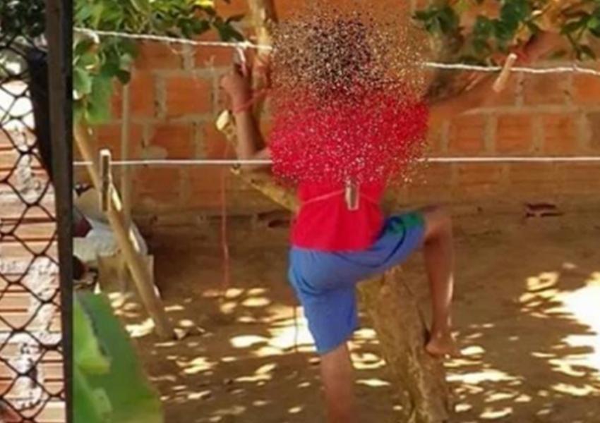 Mãe amarra filho de 12 anos em árvore no quintal de casa em Palmas de Monte Alto