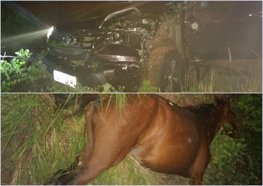 Brumado: Acidente envolvendo carro e cavalo é registrado na BA-148