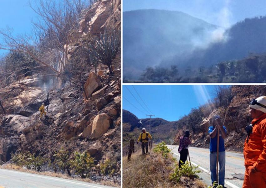 Queimada irregular tem chamas contidas por brigadistas e voluntários em Rio de Contas