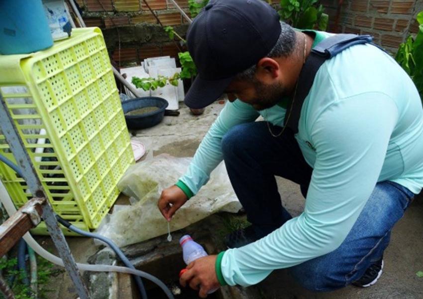 Casos de chikungunya crescem 434% na Bahia entre 2019 e 2020, aponta Sesab