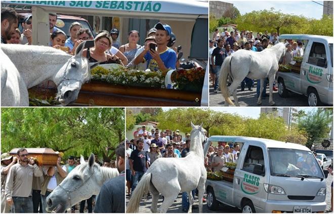Cavalo se despede do dono com gesto inesperado em velório e surpreende a todos
