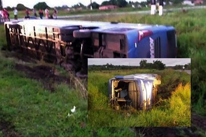 Ônibus tomba após desviar de animal na pista e deixa 7 passageiros feridos